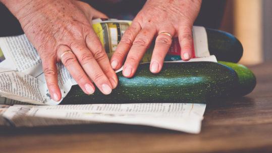 Zucchini aus dem Markgräflerland