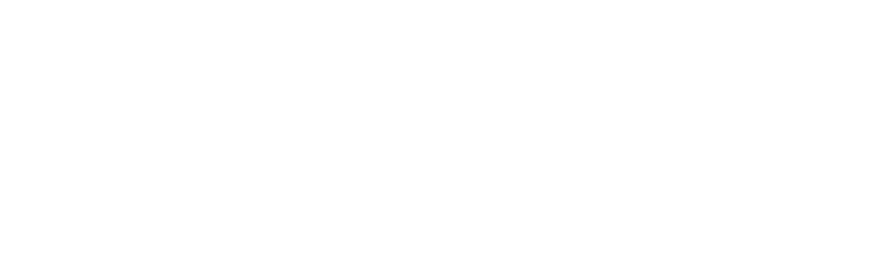 chicoria-logo